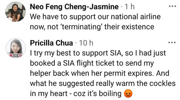 SIA, Netizens react to WP Jamus Lim's suggestion of an environment tax on SIA